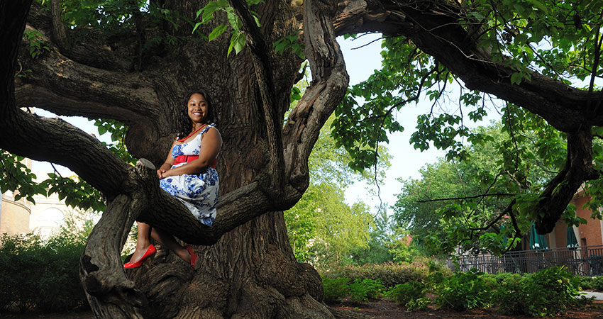 A student posing in a large tree